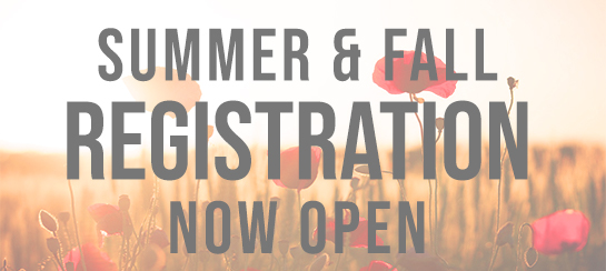 Apply Now for the  Summer/Fall 2019 at RRCC! graphic