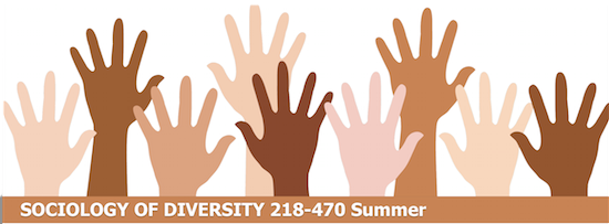 Sociology of diversity class this summer