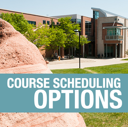 Course Scheduling Options