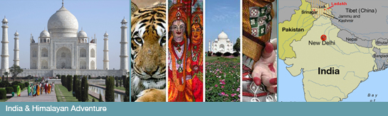 Study Abroad in India 2015