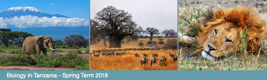 Biology in Tanzania - Spring term 2018